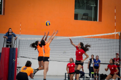 La-Salle-Dia-Internacional-del-Deporte-Universitario-23